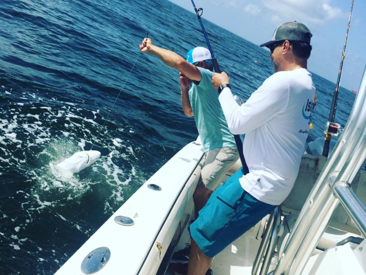 Stray Cat Fishing Charters